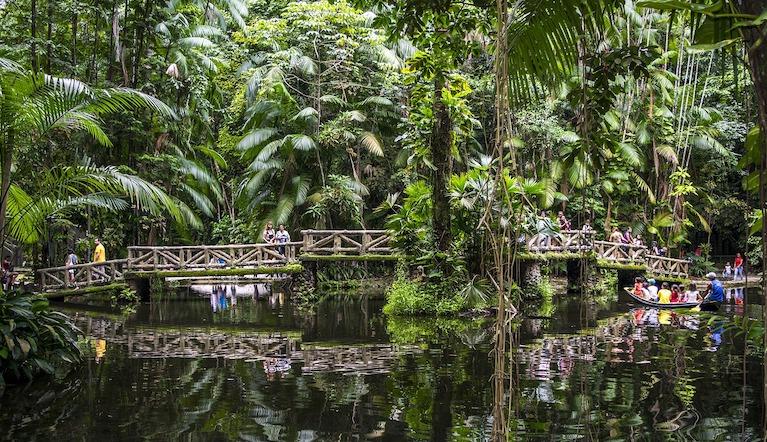 парк у реки Амазонки